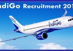 indigo airlines jobs