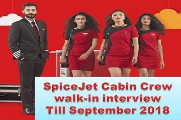 Spicejet cabin crew