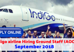 indigo airline careers