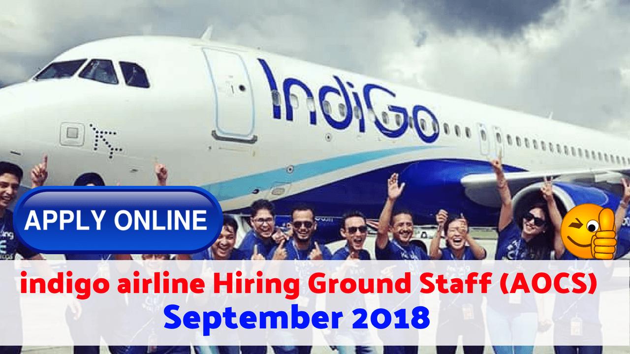 indigo airline careers