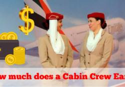 Cabin Crew Earn