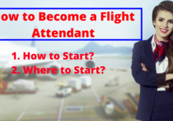 Become Flight Attendant