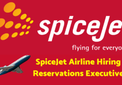 SpiceJet AirlineHiring Reservations Executive