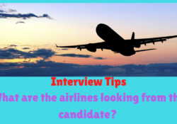 What are the airlines looking from the candidate