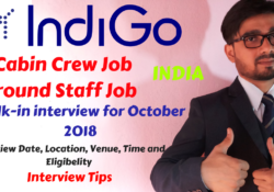 indigo airlines careers