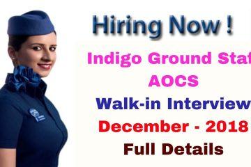 Indigo Career