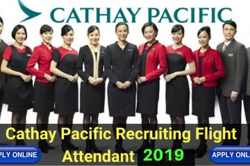 Flight Attendant Job