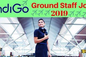 indigo ground staff interview