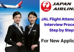 Japan Airlines Flight Attendant