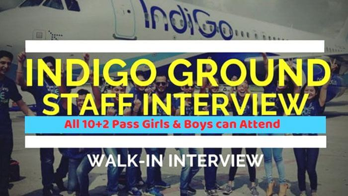 indigo ground staff interview