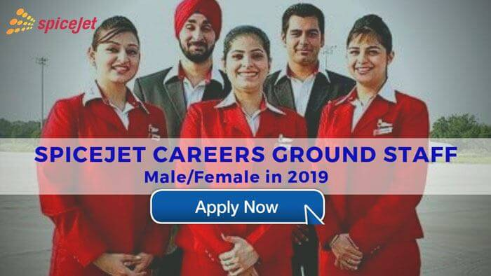 spicejet careers ground staff