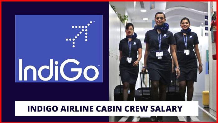 indigo cabin crew salary