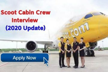 scoot cabin crew