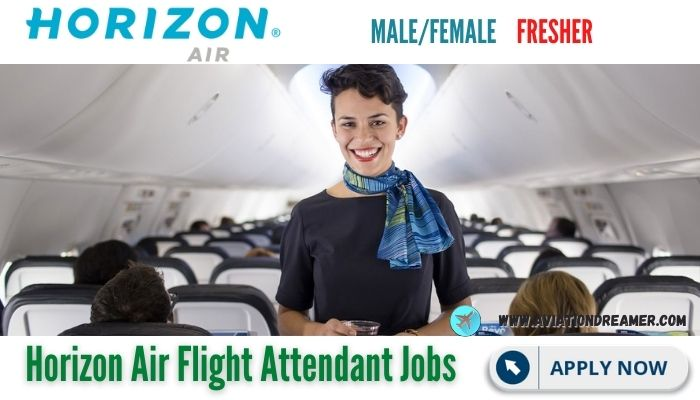 horizon air flight attendant