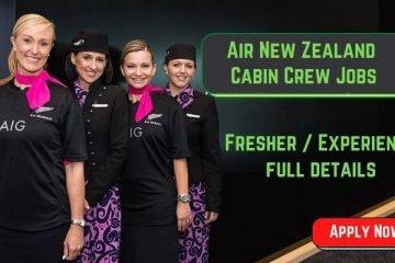 air new zealand cabin crew