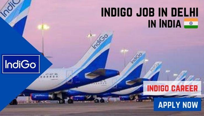 indigo job delhi