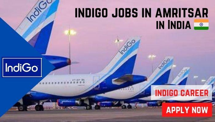 indigo jobs amritsar