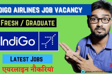 indigo airlines jobs